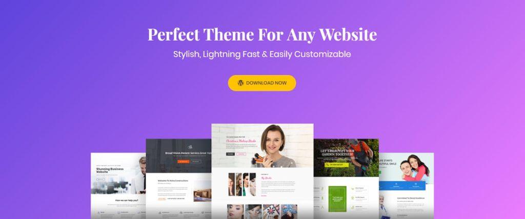 astra-theme-website