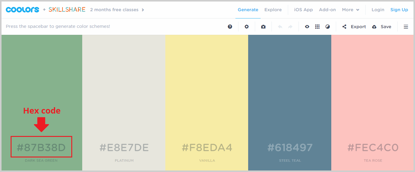 color palette with hex code